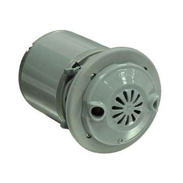 gray motor