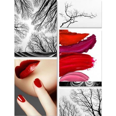5 piece Mystifying Crimson canvas murals with glass cover