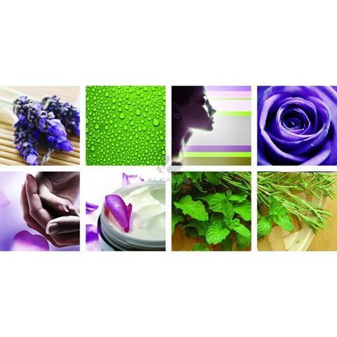 8 piece Botanical Ensemble canvas murals, green and violet color concept