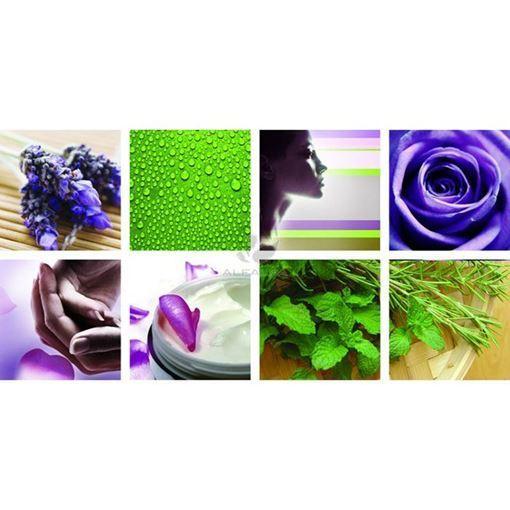 8 piece Botanical Ensemble canvas murals, green and violet color concept