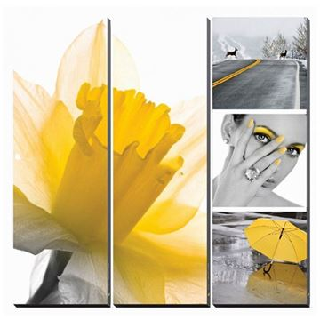 5-piece Fresh Daffodil canvas mural set in yellow color cocept