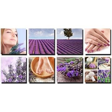 8 piece Lavender Fields canvas murals in purple color concept