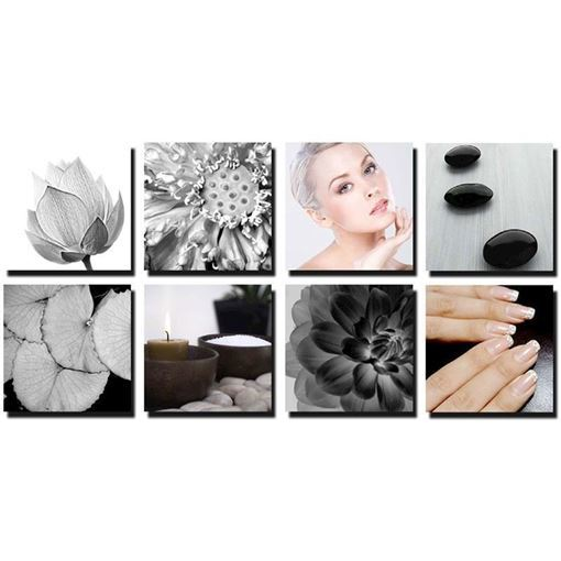 8 piece Lotus Petals canvas murals in black and white color concept