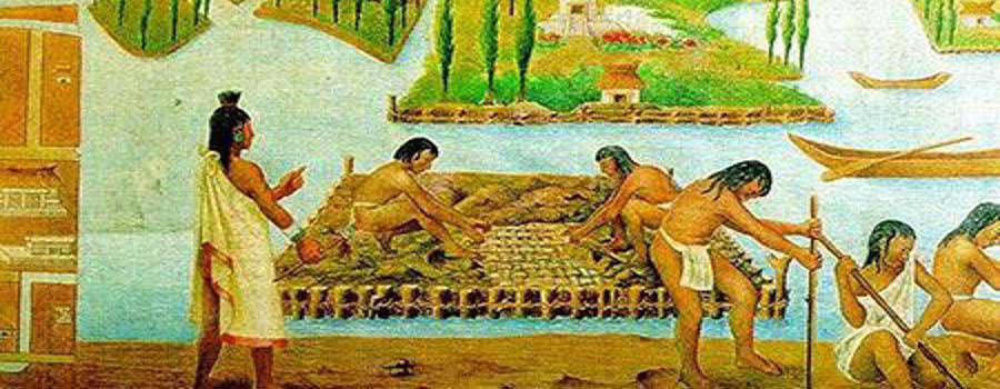 Lịch Sử Thủy Canh