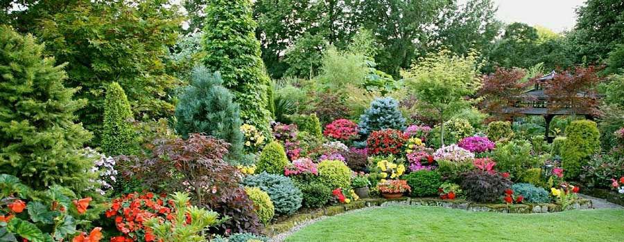 12 bước thiết kế khu vườn đơn giản