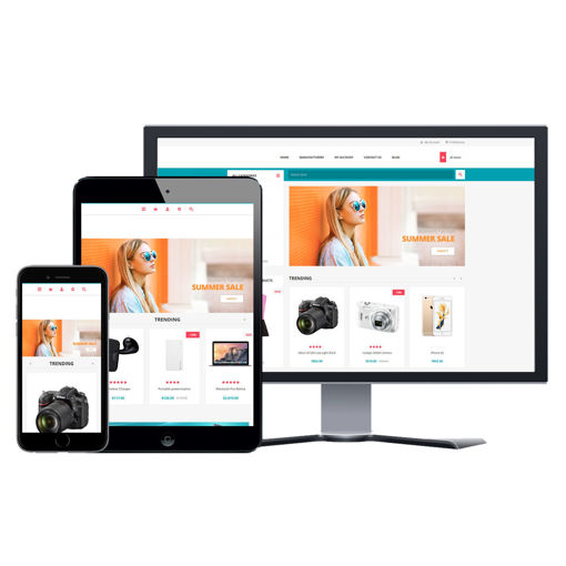 Picture of eCommerce Website - Design #911 General Store