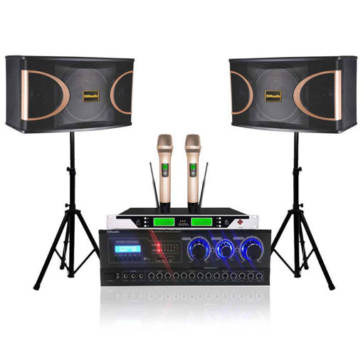 SSKaudio 600 Watt Karaoke System Package